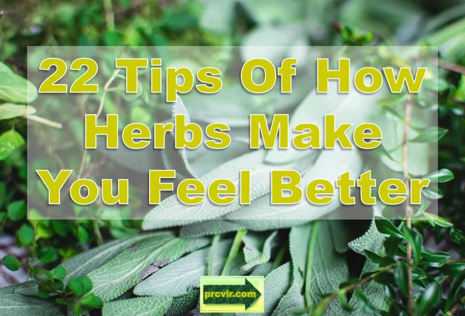 29_herbs_feel better