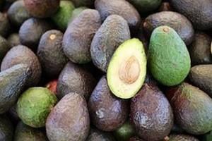 Avocado_energy food