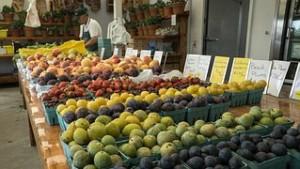farmers-market-988780__180