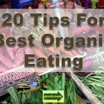 organic eating