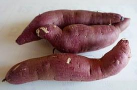 sweet-potato-1248078__180