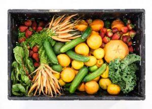 vegetables_fiber