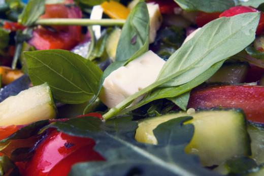 vegetable-salad_vegetarianism